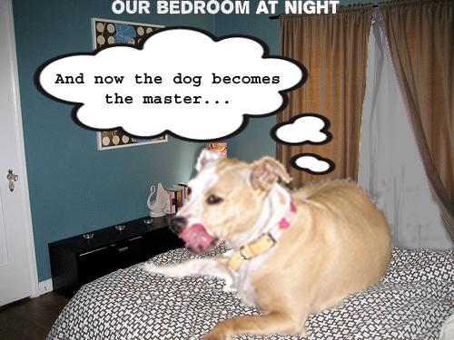 Bedroomnight copy